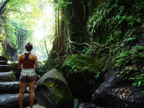 full guide monkey forest ubud  thenorthernboy