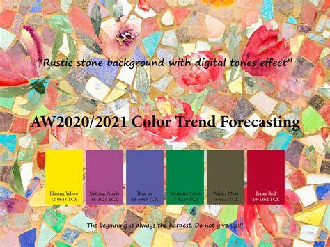 fashion web graphic design  development