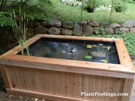 how to build a fish pond in your backyard plantpostings how to make an above ground pond