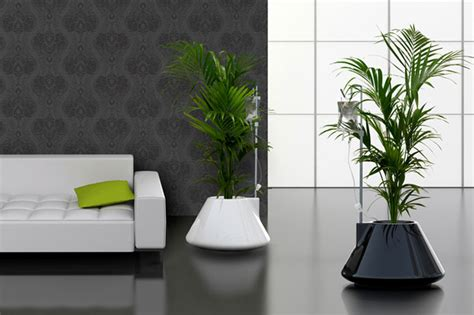 modern plants indoor vitamin living stylish indoor planters the alternative consumer