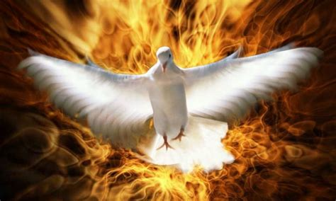 Imagenes De Dios Jesus Y Espiritu Santo | el esp 237 ritu santo y sus 7 dones comentados per 250 cat 243 lico