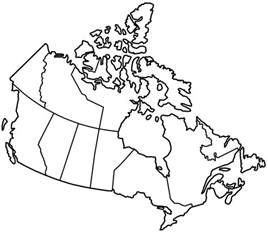 fill in map of canada mel digital arts vis assessment 3b typography image