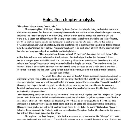 holes book report essay holes by louis sachar essay