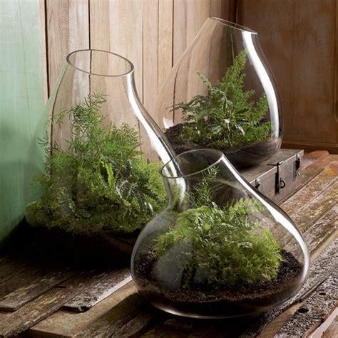 bathroom terrarium recycled glass terrarium contemporary terrariums by
