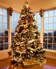 best christmas trees and decorations