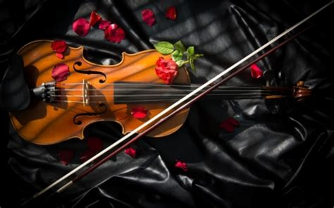 abstract violin wallpaper violin other abstract background wallpapers on desktop