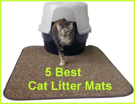 cat litter rug 5 best cat litter mats that prevent the spread of cat litter furniture magnets and proven