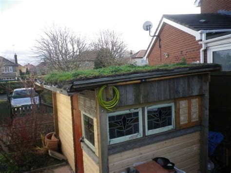 Marks Sheds by Enviromat Sedum Matting S Green Roof Shed