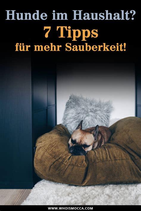 zuhause im glück deko tipps sauberer haushalt mit hund 7 tipps f 252 r ein reinliches