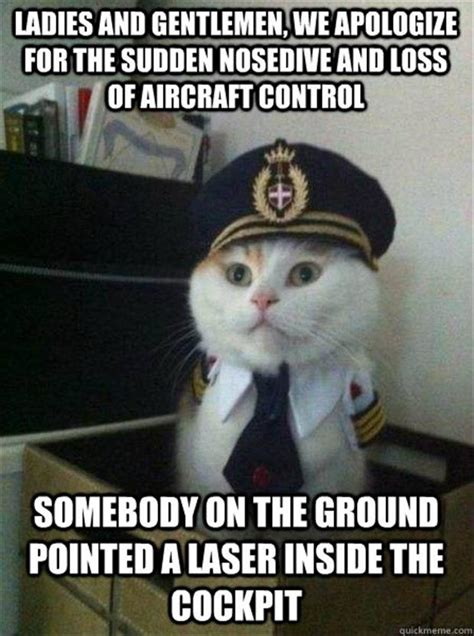 Silly Cat Memes - funny cats and lasers dump a day