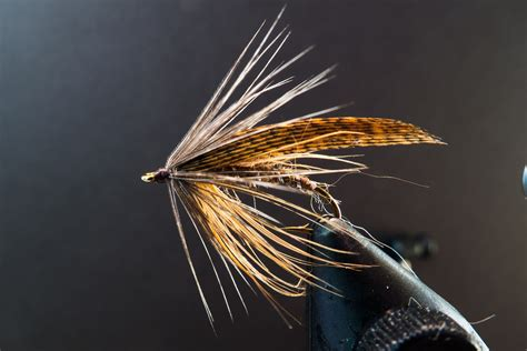 swinging wet flies for trout swinging soft hackle wets fly fishing maine fly fish