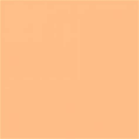 1000 images about orange swatches on pantone d and orange