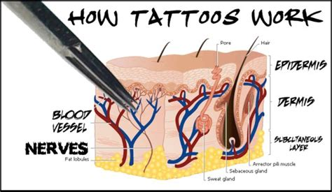 how tattoos work viking trail tattoo blog