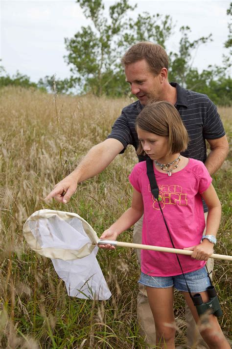 for of file child and look for insects in the grass jpg wikimedia commons
