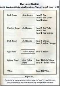 hair color level chart hair color levels brown hairs
