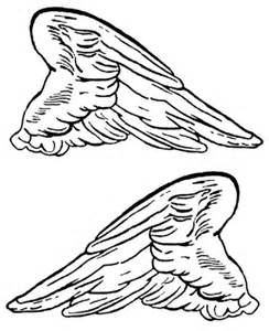 wings of coloring pages printable wings cliparts co