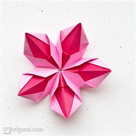 Origami 5 Petal Flower - 29 best origami business card ideas images on