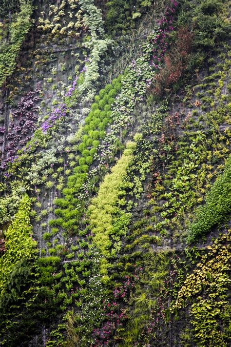 Blanc Vertical Gardens Blanc Vertical Gardens Hither Thither