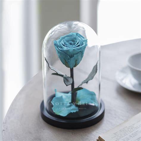 sotto la cupola acquistare la rosa sotto la cupola con la consegna in
