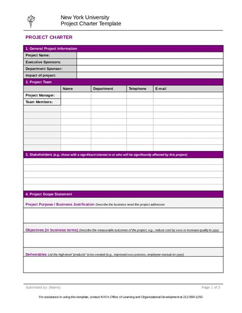 Project Charter Template Tryprodermagenix Org Project Template