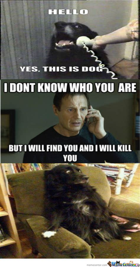 Hello This Is Dog Meme - hello this is dog memes best collection of funny hello
