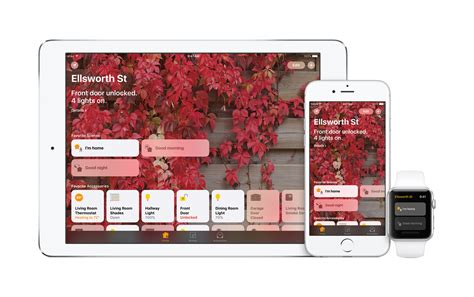 apple needed to make a standalone homekit app