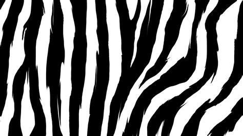 wallpaper printing zebra print wallpapers archives hd desktop wallpapers