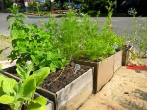 Container Vegetable Gardening by Small Space Gardening How To Grow A Garden In Containers