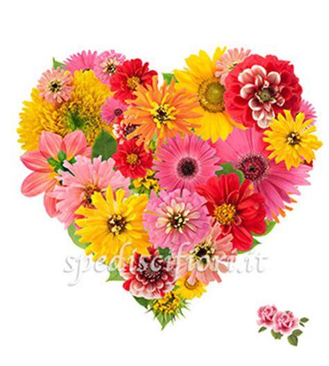 fiori colorati immagini immagini fiori colorati sfondo quot fiori colorati