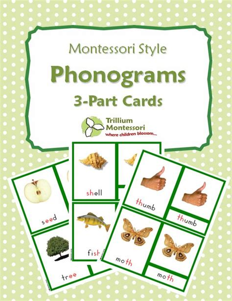 printable montessori language cards 98 best images about nomenclature cards on pinterest