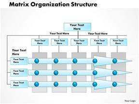 0514 matrix organization project management powerpoint