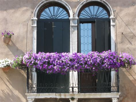 balcony flowers juliet balconies terrifying history today s beauty 45