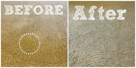How To Get Stain Out Of Rug by 15 Brilliant Stain Removal Tips Angela Says