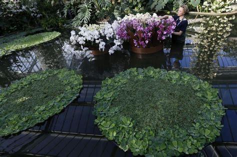 lade led per piante lade led x piante lade led x coltivazione indoor 20 x