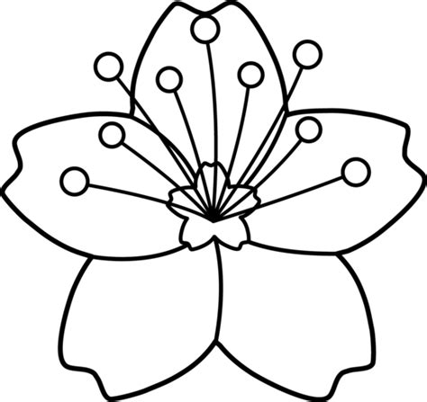clipart of flowers coloring pages flower outline clipart cliparts co