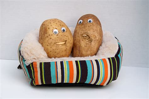 couch potato gene the science of laziness couch potato gene influences