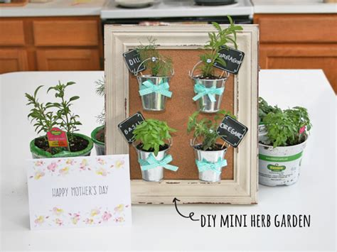 mini herb garden mother s day diy mini herb garden