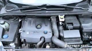 Peugeot 307 Alternator Problems Hmonghot Skf Multi V Riemset Met Dynamo Vrijloopwiel