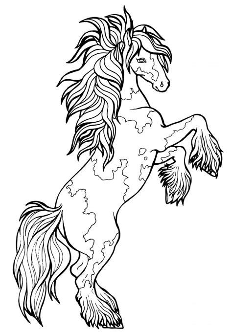 Cavalo corre trote. livro de colorir. o cavalo corre trote