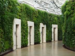 Indoor green wall with awesome long leaved grass and lots of different plant design feat modern