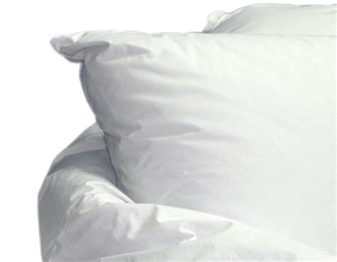 Most Expensive Pillow by Debourgeois Some Expensive Stuff