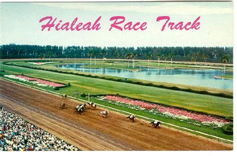 racing tracks in florida florida miami hialeah race track racing c1960