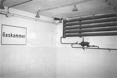 docce a gas auschwitz memoria e negazionismo 7 televignoletelevignole