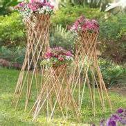 bamboo tripod trellis 1000 images about climbers and vines on