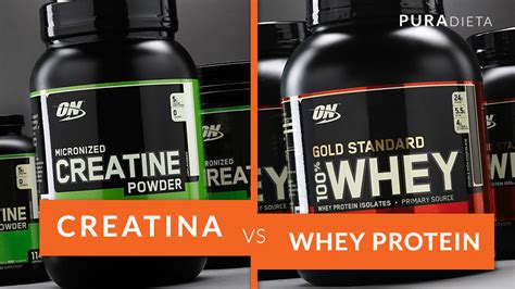 creatine e proteina creatina vs whey protein pura dieta