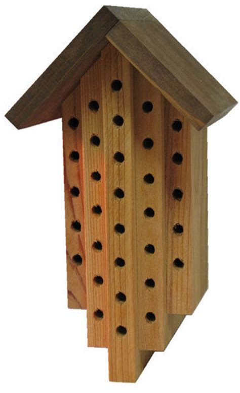 carpenter bee house quot quot shaped bee house orchard solitary bees