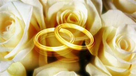 wedding motion graphics background hd abstract cgi motion graphics and animated background with