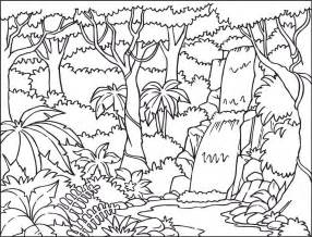 coloring page rainforest collections