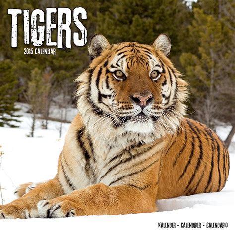 tigers wall calendar 2015 pet prints inc