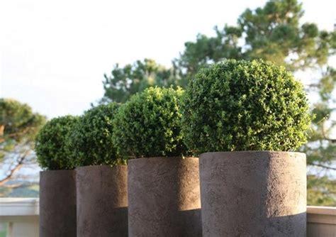 vasi in resina da esterno grandi 8 idee per vivere il giardino in privacy design mag